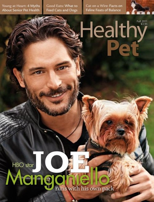 HealthyPet-Fall-2011-Front-Cover.jpg
